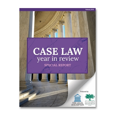 2019 Case Law Year in Review Special Report