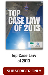 Top Case Law of 2013